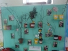 Early Years Knowledge and Understanding of the World display