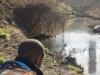 Wetlands-010