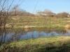Wetlands-016